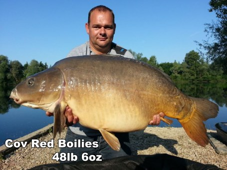 Red Fish Boilies from Cov Baits